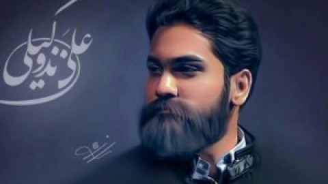 انتشار آلبوم رویای بی تکرار علی زند وکیلی تا اواخر بهمن