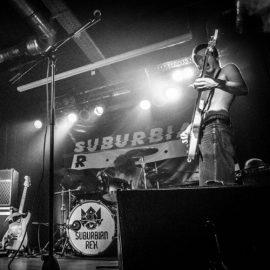 مصاحبه با گروه Suburbian Rex