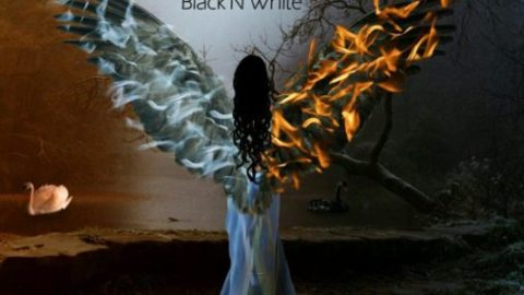 قطعه blackNwhite از گروه mirnava
