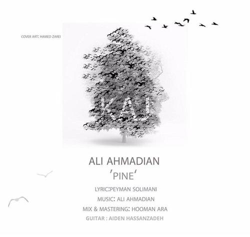 قطعه Pine از علی احمدیان