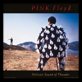 Pink Floyd – Delicate Sound of Thunder 1989
