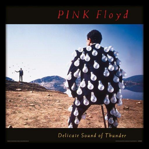 Pink Floyd - Delicate Sound of Thunder 1989