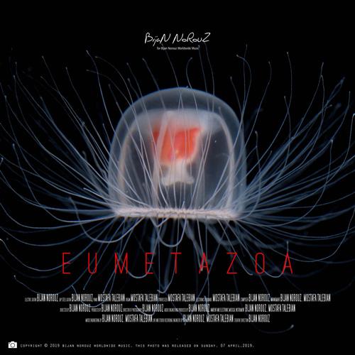 دانلود تک آهنگ هوپسزیان Eumetazoa از گروه بیژن نوروز