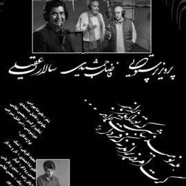 «همدم» با صدای سالار عقیلی، پرویز پرستویی و فاضل جمشیدی منتشر شد + صوت